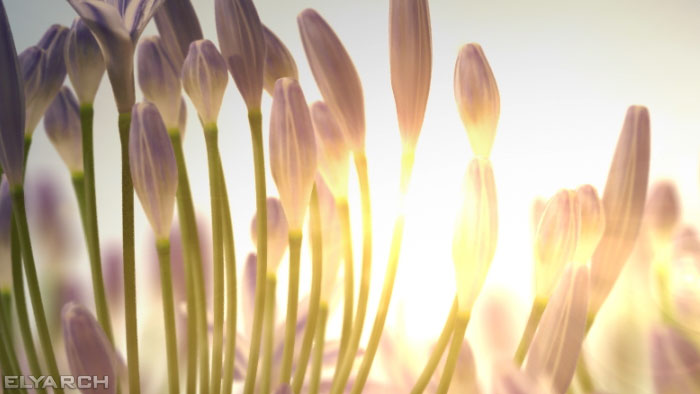 detail from a 3D CG video of agapanthus flowers
